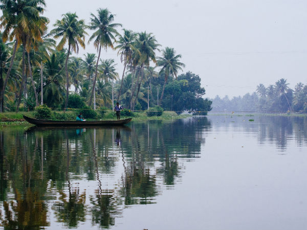 Sail and Sway in the Backwaters of Kerala