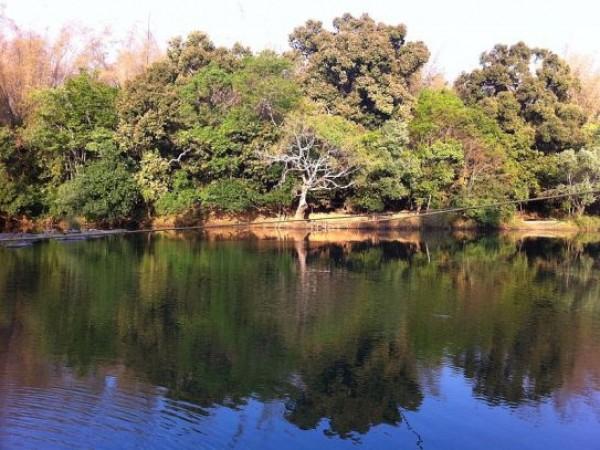 Kuruvadweep In Wayanad – Naturesque Island In Wayanad !