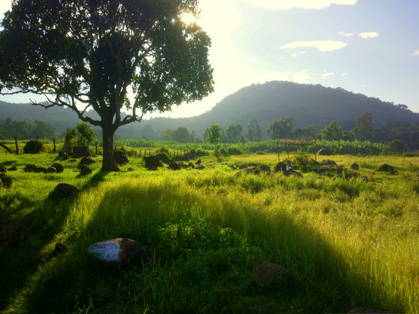10 One day destinations from Bangalore - Yelagiri Hills