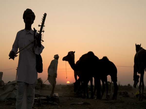 7 Interesting Facts about Pushkar Camel Fair