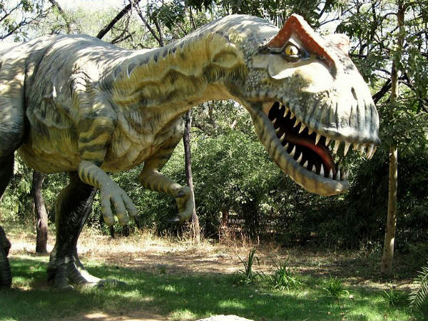 Indroda Dinosaur and Fossil Park