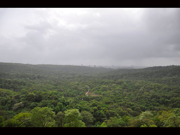 Sanjay Gandhi National Park in Mumbai