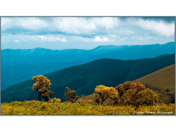 22 Amazing Road trips from Bangalore - Chikmagalur