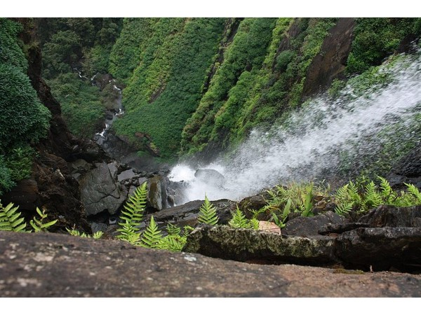 22 Amazing Road trips from Bangalore - Agumbe