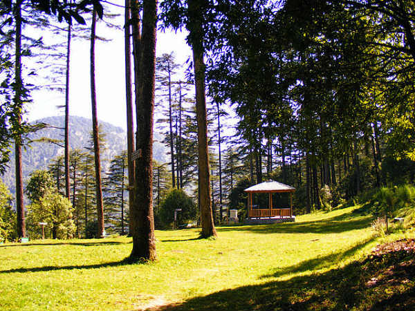 Rejuvenating Time at Dhanaulti Near Mussoorie