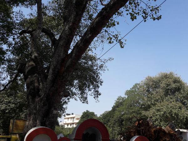 Karanji Anjaneya temple
