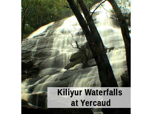 Bangalore to Yercaud