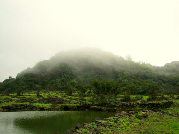 Bhimashankar Trek: A Journey For the Soul!