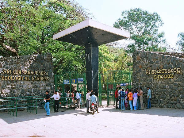 Mysore Zoo is Closed For a Month