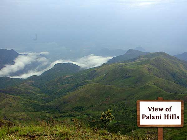 Bangalore to Kodaikanal by Road - Adventure Redefined