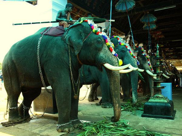 Visit The Famous Koodalmanikyam Temple In Kerala