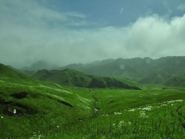 9. Dzukou Valley, Nagaland