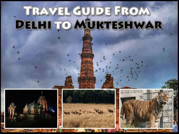 Travel Guide From Delhi to Mukteshwar
