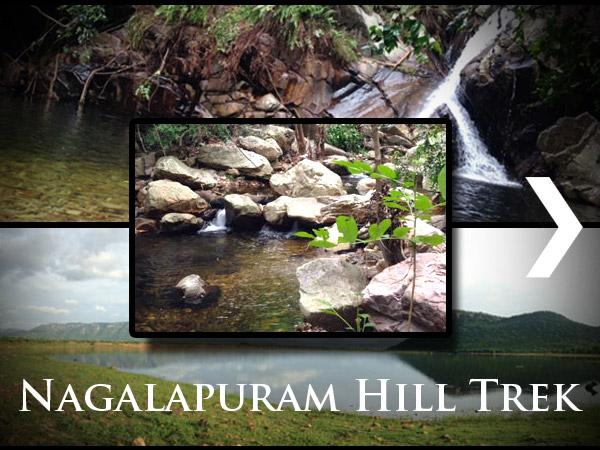 A Magical Escape Into Nature – The Nagalapuram Hill Trek