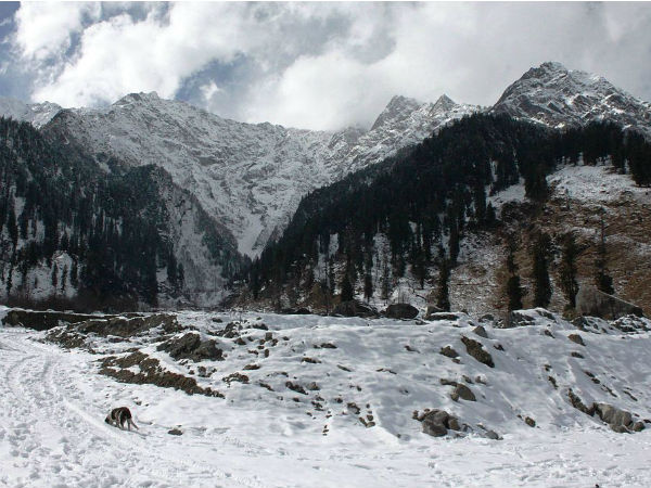 Shepherd Trail Gaddi Trek