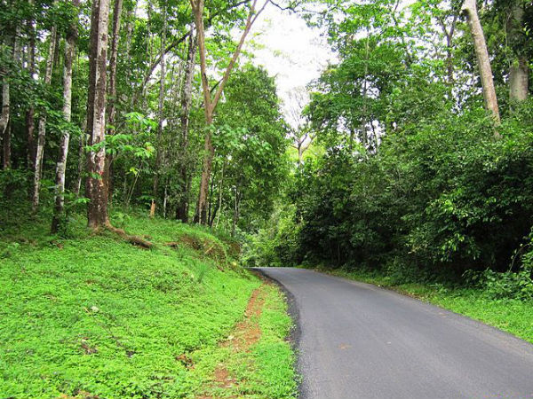 road trip from bengaluru to athirapally