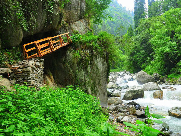 The Hidden Gem Of Shoja In Himachal Pradesh - Nativeplanet