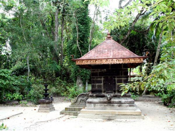 The Historical Mannarasala Sree Nagaraja Temple