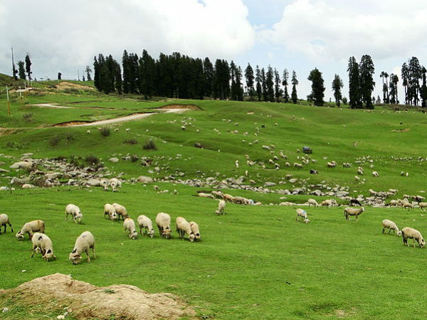 hill stations of kashmir