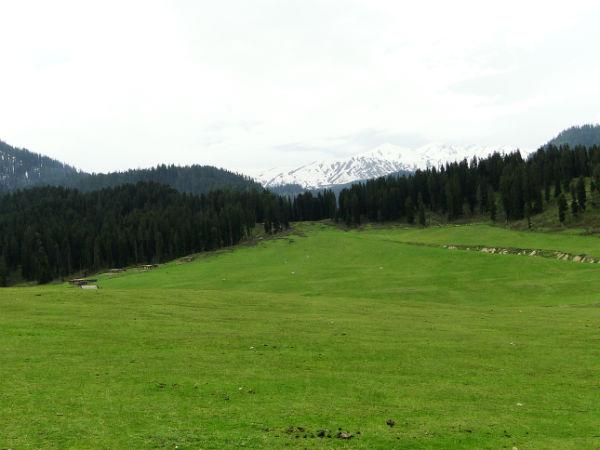 Doodhpathri – A Glimpse Of Heaven On Earth