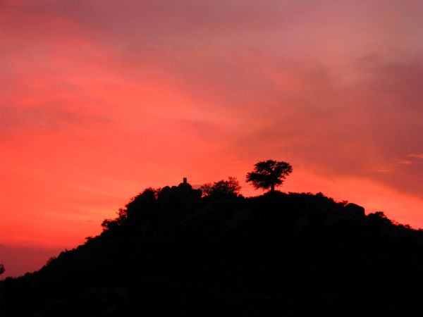 <strong>Read more about Yelagiri Hills </strong>