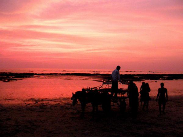 <strong>Read More About Revdanda Beach</strong>