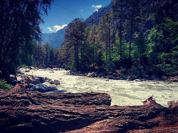 Kasol And Tosh