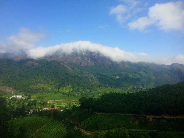 An Enchanting Trek To The Chokramudi Peak In Munnar!