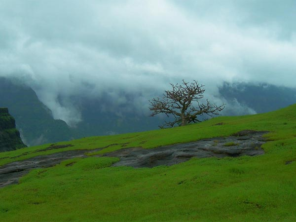 Mumbai To Junnar – Traverse The Less-explored Places Of Maharashtra