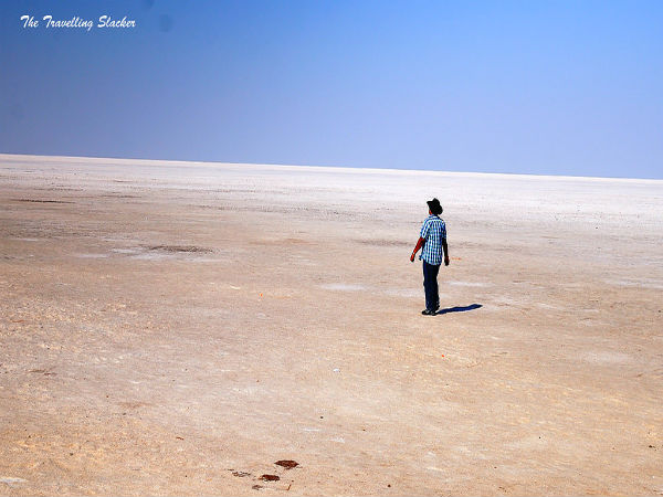 Ahmedabad To Rann of Kutch