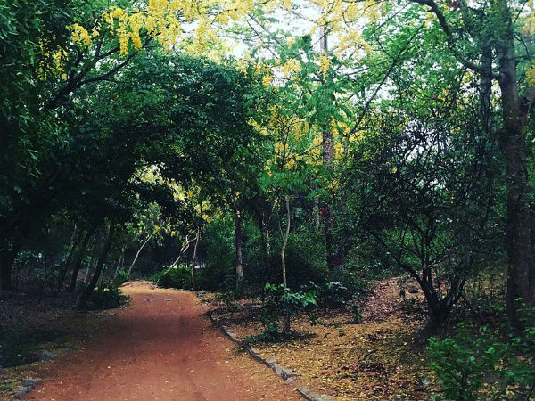 sanjay van haunted stories