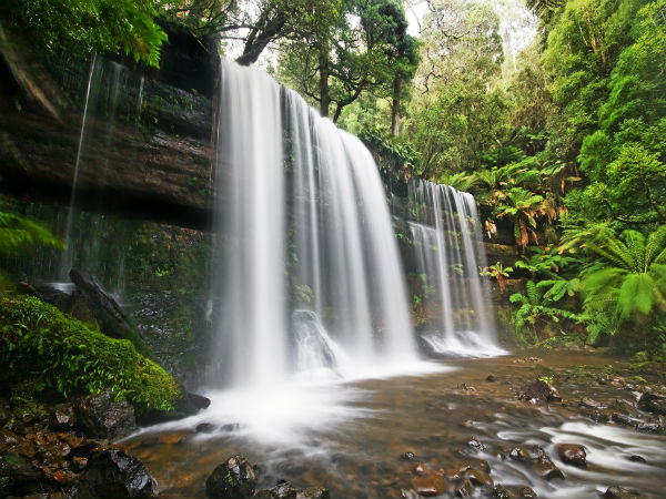The Celebrated Waterfalls Of Northeast India