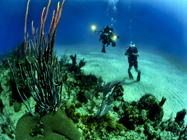 3. Andaman For Scuba Diving