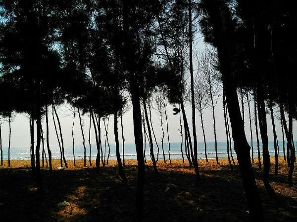 2. Go To The Lesser Known And Pristine Chandrabhaga Beach