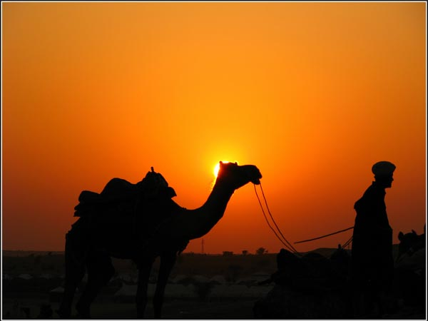 Jaisalmer – For Deserts