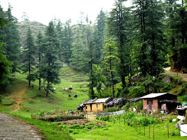 READ MORE ABOUT MUSSOORIE