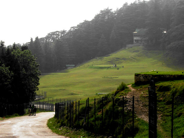 READ MORE ABOUT NALDEHRA
