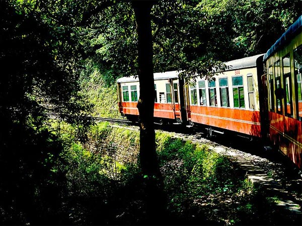 Toy Train To Kalka