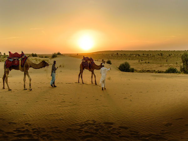 4. Go On A Camel Safari