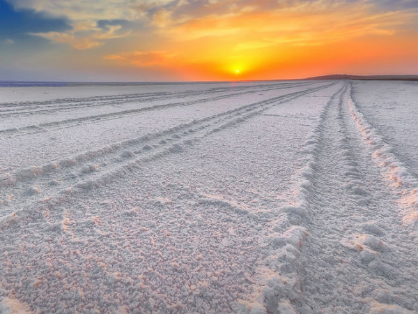 Head To The Great Rann Of Kutch