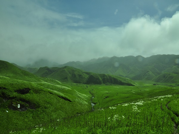 5) Dzukou Valley, Nagaland