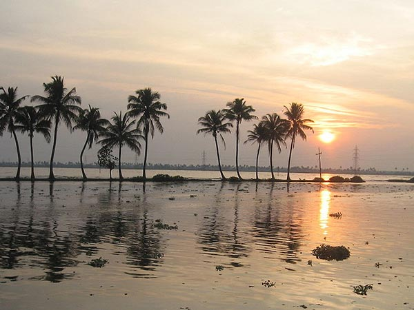 Things To Do In Ashtamudi Lake