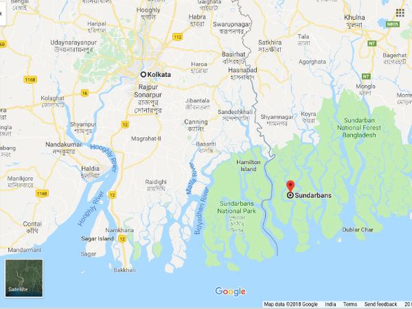 How To Reach Sundarbans From Kolkata