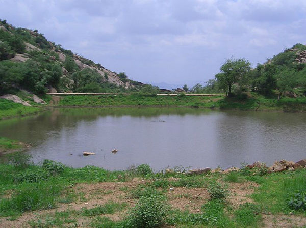 Ponds and Streams At Dhosi Hill
