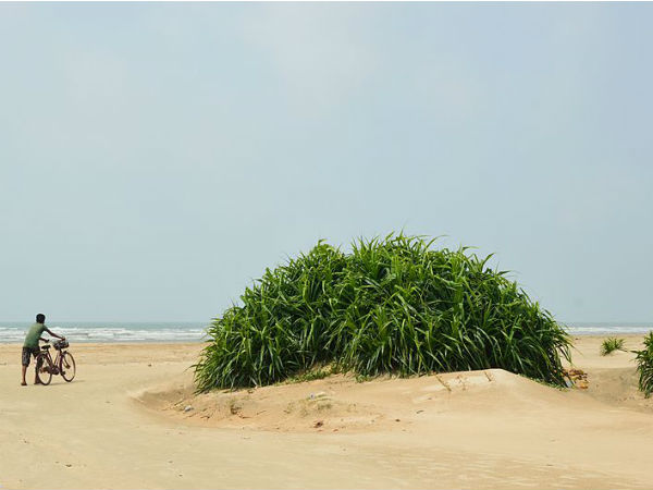 READ MORE ABOUT TAJPUR