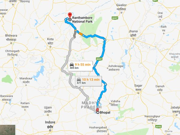 How To Reach Ranthambore From Bhopal