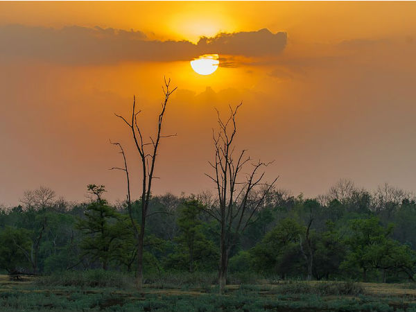 READ MORE ABOUT PENCH NATIONAL PARK