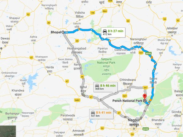 How To Reach Pench National Park From Bhopal