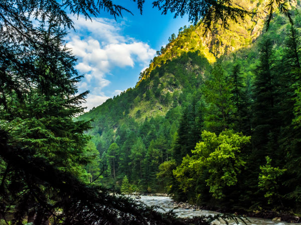 The Walk From Kasol