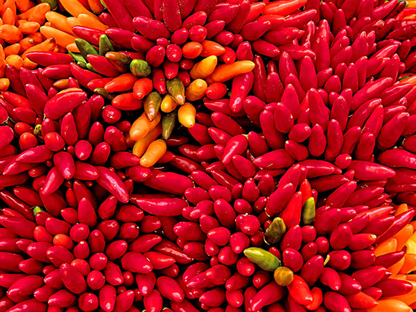 3. Land Of World's Hottest Chilli Pepper